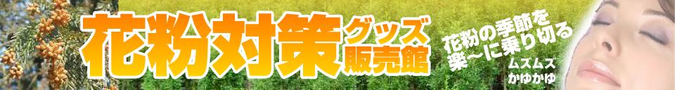 新着商品DSグッズ専門店