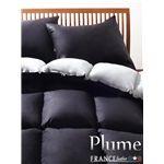フランス産フェザー100%羽根布団8点セット【Plume】プルーム ベッドタイプ クイーン アーバンブラック