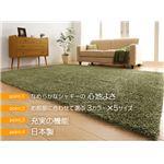 吸湿・発熱・防ダニシャギーラグ【siesta】シエスタ 190×190cm (カラー:グリーン)