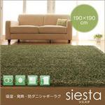 吸湿・発熱・防ダニシャギーラグ【siesta】シエスタ 190×190cm (カラー:ブラウン)