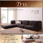 フロアコーナーカウチソファ【Tris】トリス (カラー:ダークブラウン)