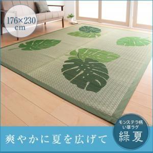 ラグマット 176×230cm モンステラ柄い草ラグ 【緑夏】 りょくか - 拡大画像