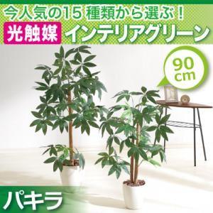今人気の15種類から選ぶ光触媒インテリアグリーン【パキラ90】