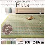 さらさらふっくら い草のラグ 【Rikka】りっか 180x240cm ブラウン