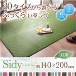 ラグマット 140×200cm【Sidy】ブラウン 30タイプから選べる国産ふっくらい草ラグ【Sidy】シディ