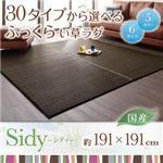 30タイプから選べる国産ふっくらい草ラグ【Sidy】シディ 191×191cm ブラウン