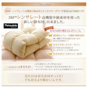 【単品】掛け布団 ダブル モカブラウン 9色から選べる!シンサレート入り掛布団