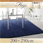 マイクロファイバー光沢デザインクッションラグ【Flugo】フルーゴ 200×250cm ネイビー