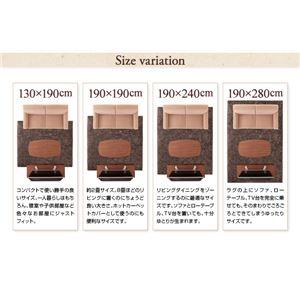 """ラグマット 190×240cm モカブラウン 12色×4サイズから選べる すべてミックスカラー """"もっと""""(ウレタン20mm厚)ふかふかマイクロファイバーの贅沢シャギーラグ"""