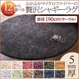 ラグマット サイレントブラック 12色×6サイズから選べる すべてミックスカラー ふかふかマイクロファイバーの贅沢シャギーラグ 直径190cm(サークル) - 拡大画像