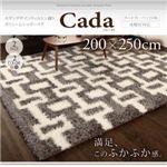 モダンデザインウィルトン織りボリュームシャギーラグ【Cada】カーダ 200×250cm グレー