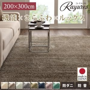 さらふわ国産ミックスシャギーラグ【rayures】レイユール 200×300cm (カラー:ネイビー)  - 拡大画像