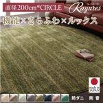 さらふわ国産ミックスシャギーラグ【rayures】レイユール 直径200cm(サークル) (カラー:グリーンブルー)