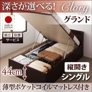 【組立設置費込】収納ベッド シングル・グランド【縦開き】【Clory】【薄型ポケットコイルマットレス付】ダークブラウン 国産跳ね上げ収納ベッド【Clory】クローリーの詳細を見る