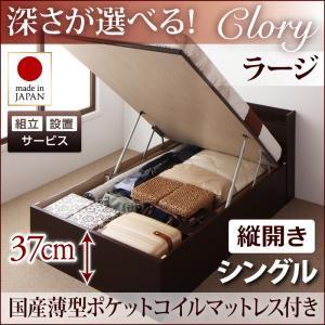 【組立設置費込】収納ベッド シングル・ラージ【縦開き】【Clory】【国産薄型ポケットコイルマットレス付】ホワイト 国産跳ね上げ収納ベッド【Clory】クローリーの詳細を見る