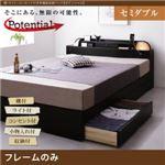 収納ベッド セミダブル【Potential】【フレームのみ】ブラック 棚・ライト・コンセント付き多機能収納ベッド【Potential】ポテンシャル