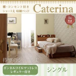 収納ベッド シングル【Caterina】【ボンネルコイルマットレス:レギュラー付き】フレームカラー:ウォルナットブラウン カバーカラー:オリーブグリーン ショート丈 棚・コンセント付き収納ベッド【Caterina】カテリーナの詳細を見る