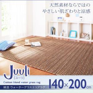 ラグマット 140×200cm【Juuli】綿混 ウォーターグラスエリアラグ【Juuli】ユーリの詳細を見る