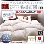【単品】掛け布団 セミダブル モカブラウン DOWNPASS認証 フランス産ホワイトダックダウンエクセルゴールドラベル羽毛掛布団