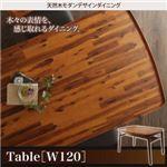 ダイニングテーブル 幅120cm テーブルカラー:ミックスブラウン 天然木モダンデザインダイニング alchemy アルケミー
