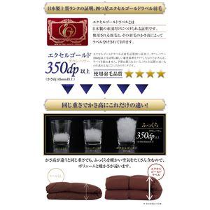布団10点セット ダブル【和タイプ】カラー:モカブラウン 日本製 防カビ消臭 エクセルゴールドラベル洗えるフランス産ダックダウン90% Lucia ルチア