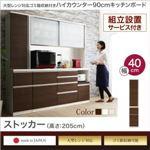 【組立設置費込】ストッカー 高さ205cm カラー:ステン ゴミ箱収納付き ハイカウンター90cm OLEGANO オレガノ