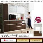 キッチンボード 幅120/高さ185cm カラー:ステン 大型レンジ対応 ゴミ箱収納付き ハイカウンター90cm OLEGANO オレガノ