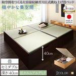 畳ベッド セミダブル 深さラージ【フレームのみ】フレームカラー:ナチュラル くつろぎの和空間をつくる日本製大容量収納ガス圧式跳ね上げ畳ベッド 涼香 リョウカ