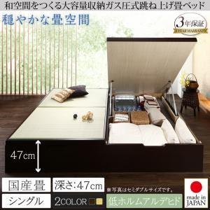 畳ベッド シングル 国産畳/深さグランド【フレームのみ】フレームカラー:ダークブラウン くつろぎの和空間をつくる日本製大容量収納ガス圧式跳ね上げ畳ベッド 涼香 リョウカ - 拡大画像
