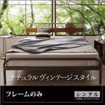 ベッド シングル 【フレームのみ】 フレームカラー:シルバーアッシュ デザインスチールベッド Sidonia シドニア