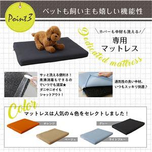 ベッド 【マットレス付】 フレームカラー:ブラウン 寝具カラー:ベージュ ミニチュアサイズが可愛い木製ペットベッド Catnel キャトネル