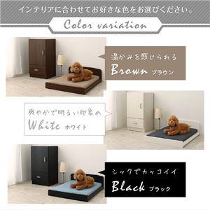 ベッド 【マットレス付】 フレームカラー:ブラック 寝具カラー:グレー ミニチュアサイズが可愛い木製ペットベッド Catnel キャトネル