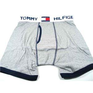 TOMMY HILFIGER (トミーヒルフィガー) アンダーウェア ブリーフ U62512232 GREY/NAVY 004 サイズLの写真1