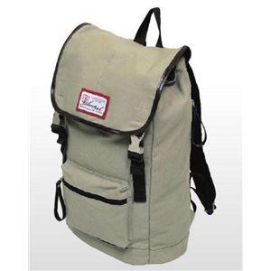 BC-ISHUTAL(ビーシーイシュタル)コトック バッグ ict-6511bg h01