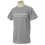 Burberry(バーバリー) ROOSE SLIM GY メンズTシャツ 3【送料無料】