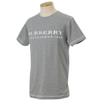 Burberry(バーバリー) ROOSE SLIM GY メンズTシャツ 5【送料無料】