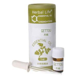 (まとめ買い)生活の木 Herbal Life月桃 1ml×2セット