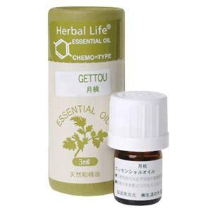 生活の木 Herbal Life 月桃 3ml - 拡大画像