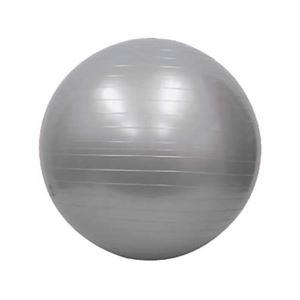アンチバーストジムボール シルバー 65cm FY-611
