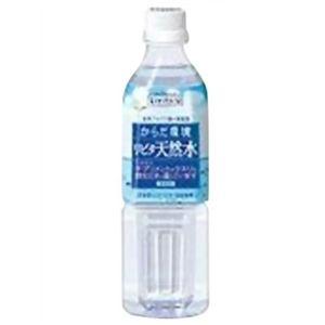 リビタ 天然水 500ml*24本