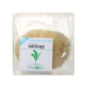 アンチトピー 天然海綿