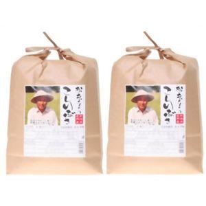 松永さんちの新潟県長岡産こしいぶき 10kg