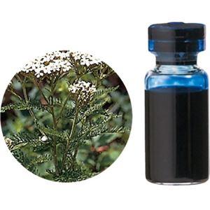 生活の木 Herbal Life レアバリューオイル ブルーヤロウ 1ml - 拡大画像