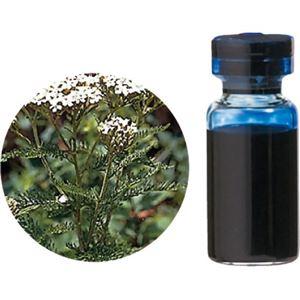 生活の木 Herbal Life レアバリューオイル ブルーヤロウ 3ml - 拡大画像