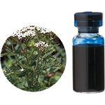 生活の木 Herbal Life レアバリューオイル ブルーヤロウ 3ml