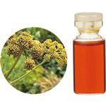 生活の木 Herbal Life レアバリューオイル ロベージ 3ml