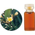 生活の木 Herbal Life 花精油 フランジュパニAbs. 3ml