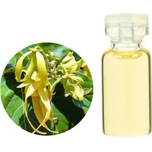 生活の木 Herbal Life Organic イランイラン・コンプリート 10ml - 拡大画像