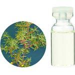 生活の木 Herbal Life Organic ジュニパー 10ml
