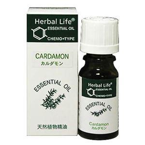生活の木 Herbal Life カルダモン 10ml - 拡大画像